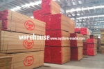 NVP Propeller 19x10 GST Inc (Global Warehouse)