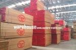 NVP Propeller 19x10 GST Inc (Global Warehouse)