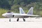 Freewing F-22 Raptor Ultra Performance 90mm EDF Jet ARF plus Servo RC Airplane (Global Warehouse)