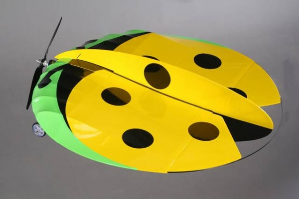 GREEN RC EP LADYBUG PARKFLYER (AUS Warehouse)